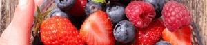 Wie bringst du gute Frucht?