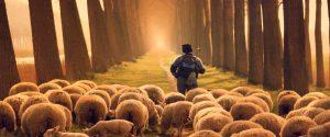 Hirte mit Schafherde läuft in den Sonnenuntergang