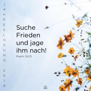 Missionswerk Karlsruhe Ermutigung der Woche Suche Frieden Bunte Blumen vor blauem Himmel
