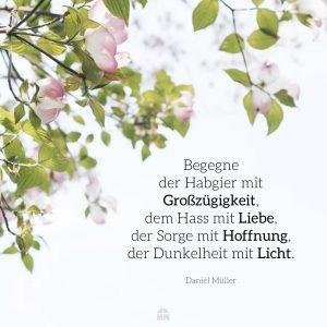 Missionswerk Karlsruhe Ermutigung der Woche Ändere die Kultur Blütenzweig