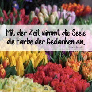 Missionswerk Karlsruhe Ermutigng der Woche Deine Gedenken dein Leben Blumensträuße