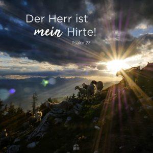 Missionswerk Karlsruhe Ermutigung der Woche Mein Hirte Schafsherde auf Bergen