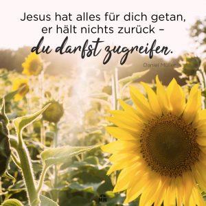 Sonnenblumen Feld Missionswerk Karlsruhe Ermutigung der Woche Auf Empfang
