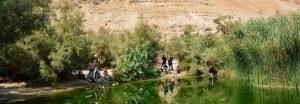 Oase En Feschcha Israel-Rundreise 2019 Missionswerk Karlsrueh