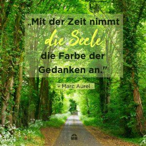 Grüner Wald Deine Gedanken dein Leben Ermutigung der Woche Missionswerk Karlsruhe