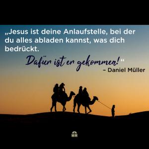Kamele in der Wüste Friede sei mit dir Ermutigung der Woche Missionswerk Karlsruhe