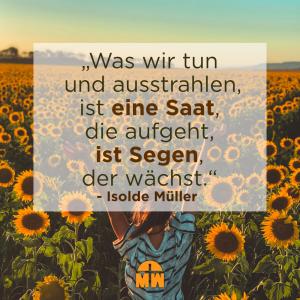 Frau auf Sonnenblumenfeld Segen der wächst Ermutigung der Woche Missionswerk Karlsruhe