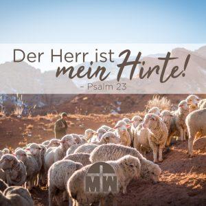 Schafherde bei Sonnenuntergang vor Bergen Der Herr ist mein Hirte Ermutigung der Woche Missionswerk Karlsruhe