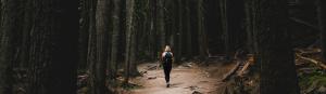Spaziergang im Wald Verändere deinen Alltag Ermutigung der Woche Missionswerk Karlsruhe