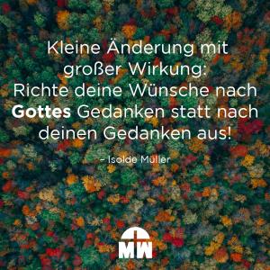 Bunter Herbstwald Du wirst finden, was du suchst Ermutigung der Woche Missionswerk Karlsruhe